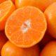 橙(オレンジ:Orange)で魅了するWEBデザイン