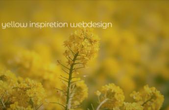 黄(イエロー:Yellow)で魅了するWEBデザイン