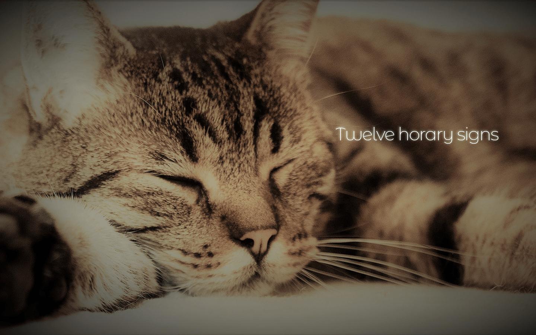 十二支 ~ ネズミが猫に末代まで追い回される理由